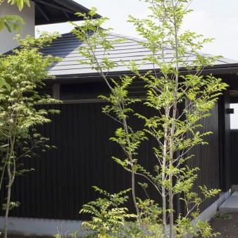 1:外観 黒色の板張りは共有部分で、軒先の高さはGL+2200としている。