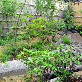 奥行きのある敷地を活かす為、川下に循環ポンプを設置し流れのある小さな川を造った。 川下のたまり場には、水草と共に金魚やメダカが住み着いている。