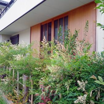 4:外観 駐車場から建物を見る。竣工から月日が経ち、ナンテンの生け垣が成長してきている。 居間の建具は木製引き分け戸。雨戸、網戸、ガラス戸、障子は、それぞれのシーンによって使い分ける。
