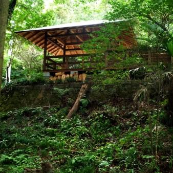 3:屋根架構 樹木の隙間を縫って建っている。