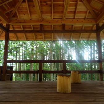9:屋根架構 屋根架構の梁、垂木、野地板は杉。軒先が景色を切り取る。